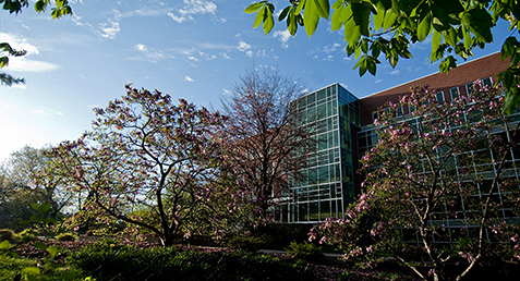 Faculty Receive Funding to Develop Open Educational Resources